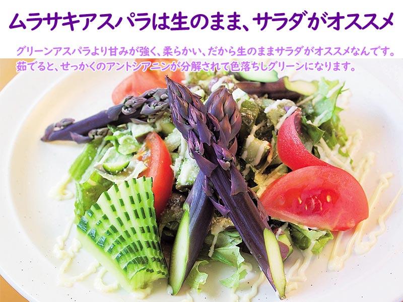 ムラサキアスパラ サラダ