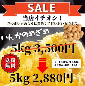 北海道産インカのめざめ5kg