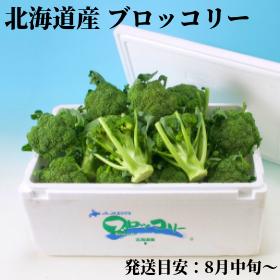 北海道産ブロッコリー