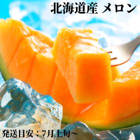北海道産メロン