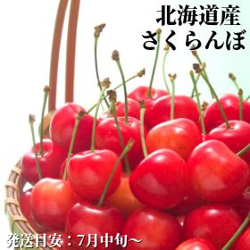 北海道産さくらんぼ